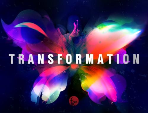 """Transformation Vol. 2"""